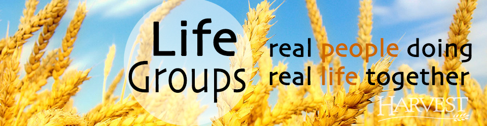 Life Groups  web banner